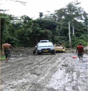 ekploitasi hutan Papua