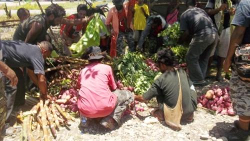 hasil bumi untuk mendukung perjuangan papua merdeka, oleh Rakyat Yalle-Nang, 14 Maret 2015